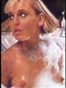 Smithers nackt Joy  Cobie Smulder